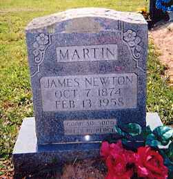 MARTIN, JAMES NEWTON - Newton County, Arkansas | JAMES NEWTON MARTIN - Arkansas Gravestone Photos