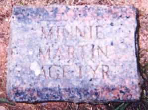 MARTIN, MINNIE - Newton County, Arkansas | MINNIE MARTIN - Arkansas Gravestone Photos
