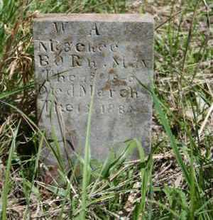 MCGEEHEE, WILLIAM A. - Newton County, Arkansas | WILLIAM A. MCGEEHEE - Arkansas Gravestone Photos