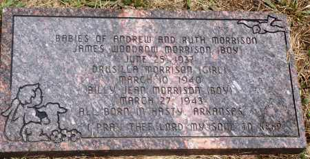 MORRISON, JAMES WOODROW - Newton County, Arkansas | JAMES WOODROW MORRISON - Arkansas Gravestone Photos