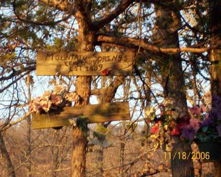 *MOUNTAIN SPRINGS CEMETERY,  - Newton County, Arkansas |  *MOUNTAIN SPRINGS CEMETERY - Arkansas Gravestone Photos