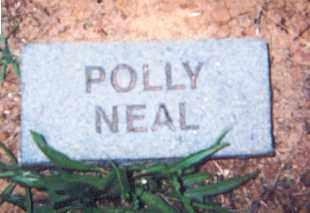 NEAL, POLLY - Newton County, Arkansas | POLLY NEAL - Arkansas Gravestone Photos