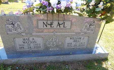 NEAL, WILLIAM J. (BILL) - Newton County, Arkansas | WILLIAM J. (BILL) NEAL - Arkansas Gravestone Photos