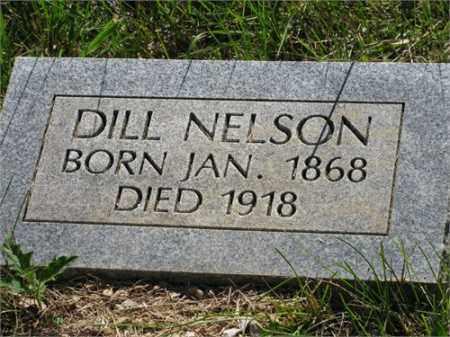 NELSON, DILL - Newton County, Arkansas | DILL NELSON - Arkansas Gravestone Photos