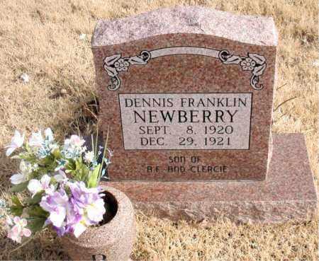 NEWBERRY, DENNIS FRANKLIN - Newton County, Arkansas | DENNIS FRANKLIN NEWBERRY - Arkansas Gravestone Photos