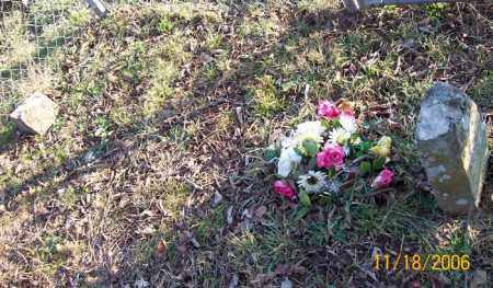 NEWBERRY, INFANT SON - Newton County, Arkansas | INFANT SON NEWBERRY - Arkansas Gravestone Photos