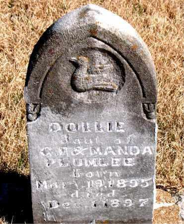 PLUMLEE, DOLLIE - Newton County, Arkansas | DOLLIE PLUMLEE - Arkansas Gravestone Photos