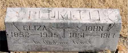 PLUMLEE, ELIZA - Newton County, Arkansas | ELIZA PLUMLEE - Arkansas Gravestone Photos