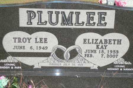 PLUMLEE, ELIZABETH KAY - Newton County, Arkansas | ELIZABETH KAY PLUMLEE - Arkansas Gravestone Photos