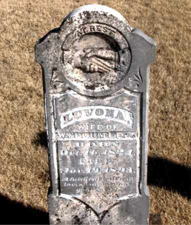 PLUMLEE, LUVONA - Newton County, Arkansas | LUVONA PLUMLEE - Arkansas Gravestone Photos