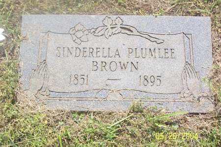 PLUMLEE BROWN, SINDERELLA - Newton County, Arkansas | SINDERELLA PLUMLEE BROWN - Arkansas Gravestone Photos