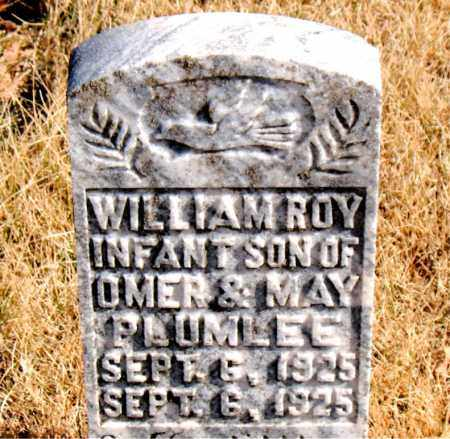 PLUMLEE, WILLIAM ROY - Newton County, Arkansas | WILLIAM ROY PLUMLEE - Arkansas Gravestone Photos