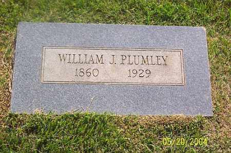 PLUMLEE, WILLIAM  J. - Newton County, Arkansas | WILLIAM  J. PLUMLEE - Arkansas Gravestone Photos