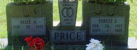 PRICE, ALLIE A - Newton County, Arkansas | ALLIE A PRICE - Arkansas Gravestone Photos