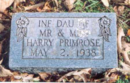 PRIMROSE, INFANT DAUGHTER - Newton County, Arkansas | INFANT DAUGHTER PRIMROSE - Arkansas Gravestone Photos