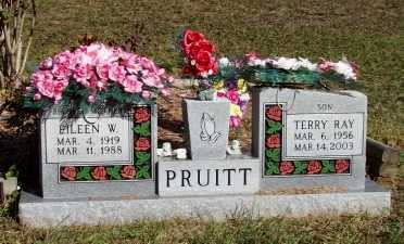 PRUITT, EILEEN W. - Newton County, Arkansas | EILEEN W. PRUITT - Arkansas Gravestone Photos