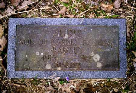 RAMSEY, AUDIE - Newton County, Arkansas | AUDIE RAMSEY - Arkansas Gravestone Photos