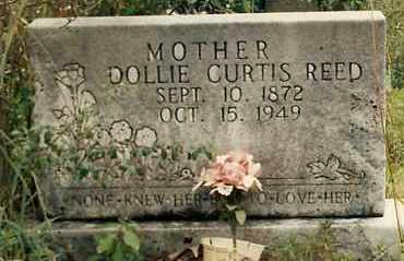 CURTIS REED, DOLLIE - Newton County, Arkansas | DOLLIE CURTIS REED - Arkansas Gravestone Photos