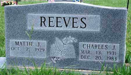 REEVES, CHARLES J - Newton County, Arkansas | CHARLES J REEVES - Arkansas Gravestone Photos