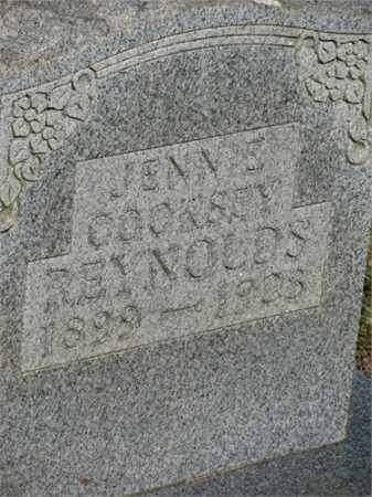 REYNOLDS, JENNIE - Newton County, Arkansas | JENNIE REYNOLDS - Arkansas Gravestone Photos