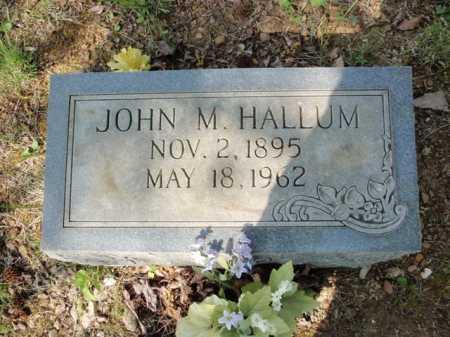 HALLUM, JOHN MONDROE - Newton County, Arkansas | JOHN MONDROE HALLUM - Arkansas Gravestone Photos