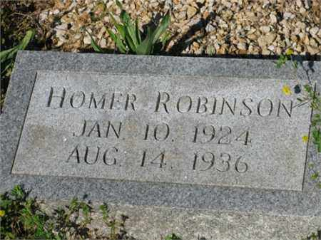 ROBINSON, HOMER - Newton County, Arkansas | HOMER ROBINSON - Arkansas Gravestone Photos