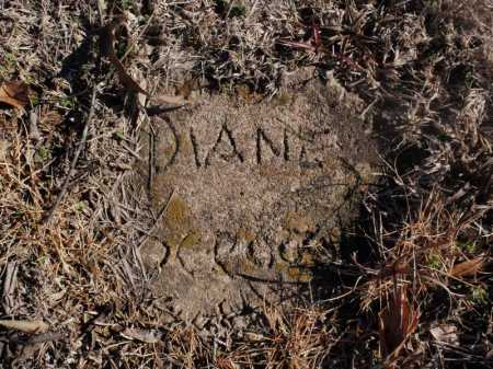 SCROGGINS, DIANE - Newton County, Arkansas | DIANE SCROGGINS - Arkansas Gravestone Photos