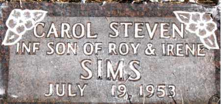 SIMS, CAROL   STEVEN - Newton County, Arkansas   CAROL   STEVEN SIMS - Arkansas Gravestone Photos