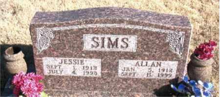 SIMS, ALLAN - Newton County, Arkansas | ALLAN SIMS - Arkansas Gravestone Photos