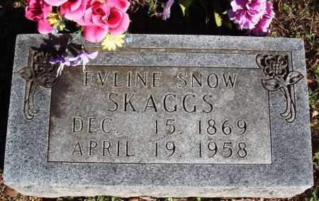 YOUNGBLOOD SKAGGS, EVLINE - Newton County, Arkansas | EVLINE YOUNGBLOOD SKAGGS - Arkansas Gravestone Photos