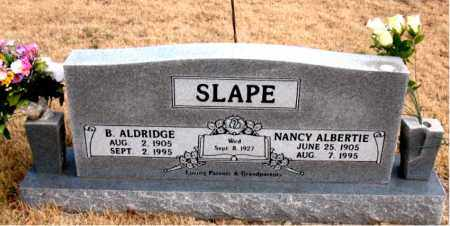 SLAPE, B.  ALDRIDGE - Newton County, Arkansas | B.  ALDRIDGE SLAPE - Arkansas Gravestone Photos