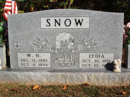 SNOW, LYDIA CALIFORNIA - Newton County, Arkansas | LYDIA CALIFORNIA SNOW - Arkansas Gravestone Photos