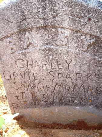 SPARKS, CHARLEY ORVIL - Newton County, Arkansas | CHARLEY ORVIL SPARKS - Arkansas Gravestone Photos