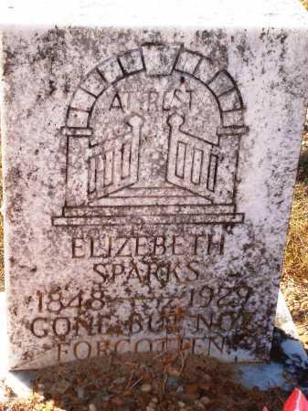 SPARKS, ELIZEBETH - Newton County, Arkansas | ELIZEBETH SPARKS - Arkansas Gravestone Photos