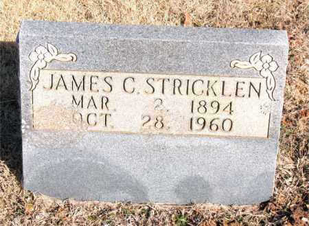 STRICKLEN, JAMES C. - Newton County, Arkansas   JAMES C. STRICKLEN - Arkansas Gravestone Photos