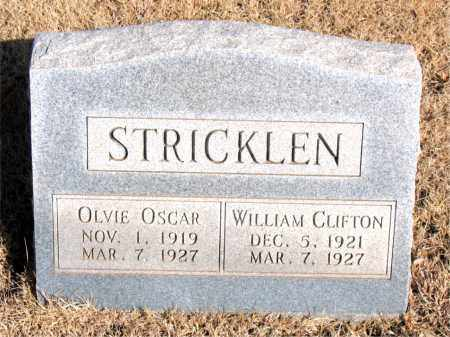 STRICKLEN, WILLIAM CLIFTON - Newton County, Arkansas | WILLIAM CLIFTON STRICKLEN - Arkansas Gravestone Photos