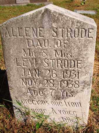 STRODE, ALLENE - Newton County, Arkansas | ALLENE STRODE - Arkansas Gravestone Photos