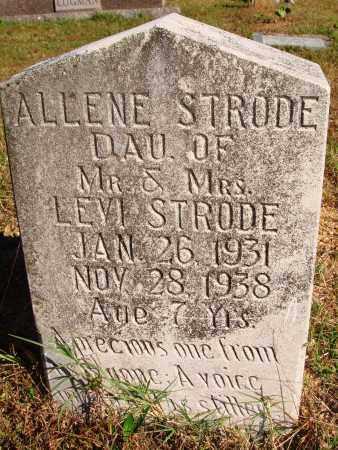 STRODE, ALLENE - Newton County, Arkansas | ALLENE STRODE - Arkansas Gravestone Photos