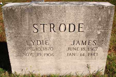 STRODE, JAMES - Newton County, Arkansas | JAMES STRODE - Arkansas Gravestone Photos