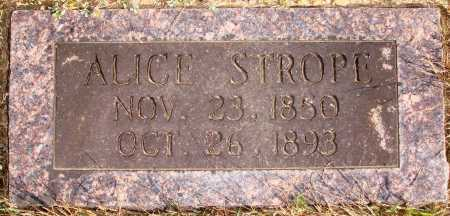 STROPE, ALICE - Newton County, Arkansas | ALICE STROPE - Arkansas Gravestone Photos