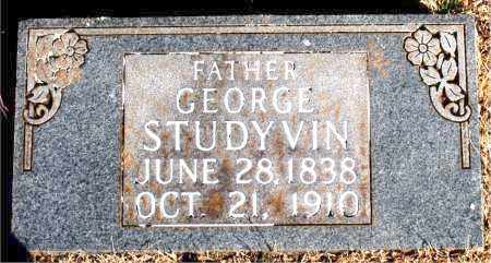 STUDYVIN, GEORGE - Newton County, Arkansas | GEORGE STUDYVIN - Arkansas Gravestone Photos