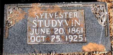 STUDYVIN, SYLVESTER - Newton County, Arkansas | SYLVESTER STUDYVIN - Arkansas Gravestone Photos