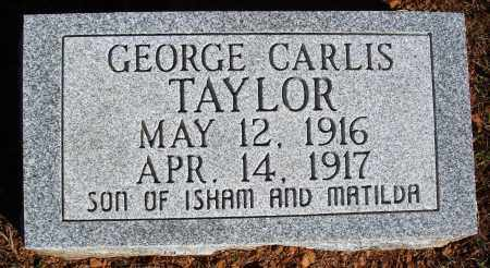 TAYLOR, GEORGE CARLIS - Newton County, Arkansas | GEORGE CARLIS TAYLOR - Arkansas Gravestone Photos