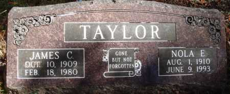 TAYLOR, NOLA E. - Newton County, Arkansas | NOLA E. TAYLOR - Arkansas Gravestone Photos