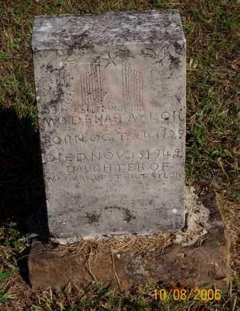 TAYLOR, MODENA - Newton County, Arkansas | MODENA TAYLOR - Arkansas Gravestone Photos