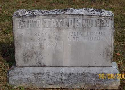 TAYLOR, JULIA - Newton County, Arkansas | JULIA TAYLOR - Arkansas Gravestone Photos