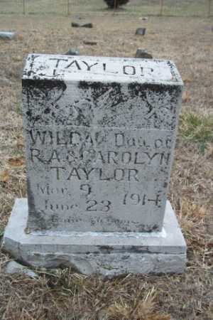 TAYLOR, WILDA - Newton County, Arkansas | WILDA TAYLOR - Arkansas Gravestone Photos