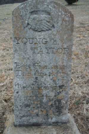 TAYLOR, YOUNG L. - Newton County, Arkansas | YOUNG L. TAYLOR - Arkansas Gravestone Photos