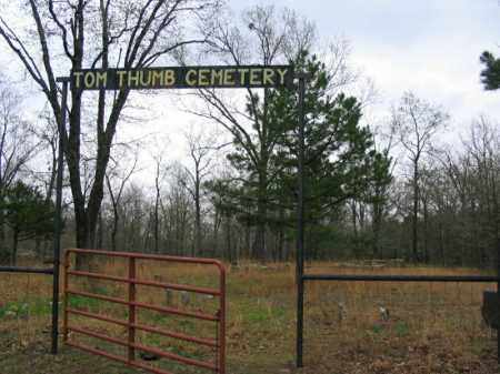 *TOM THUMB CEMETERY GATE,  - Newton County, Arkansas |  *TOM THUMB CEMETERY GATE - Arkansas Gravestone Photos