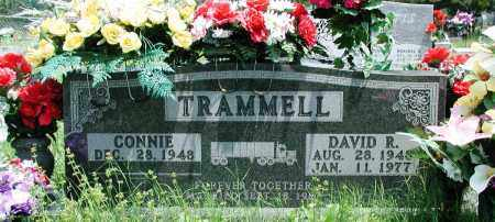 TRAMMELL, DAVID R - Newton County, Arkansas | DAVID R TRAMMELL - Arkansas Gravestone Photos
